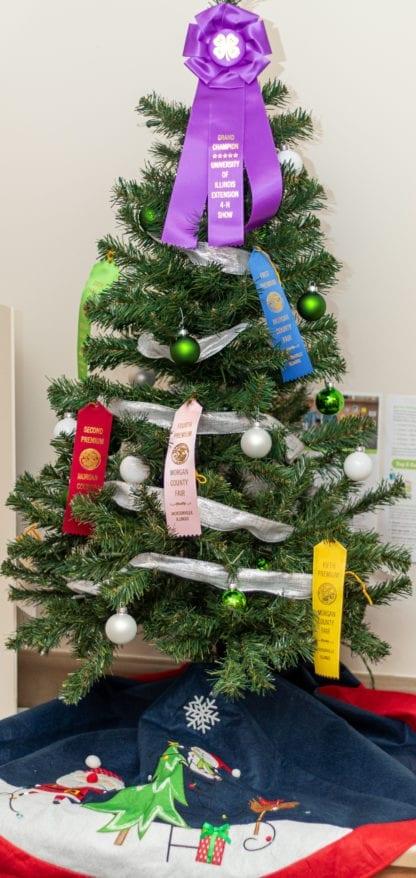 Morgan County Fair Ribbon Tree 3